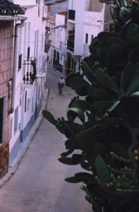 Calle 2