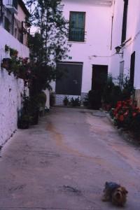 Rincón casa Rubio